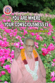 You Are Where Your Consciousness Is